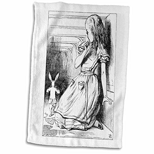 3dRose InspirationzStore Vintage Art - Follow the white rabbit. Alice in Wonderland John Tenniel illustration - 15x22 Hand Towel (twl_193789_1)