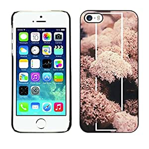 Soft Silicone Rubber Case Hard Cover Protective Accessory Compatible with Apple iPhone? 5 & 5S - coral sea life nature fish diving underwater