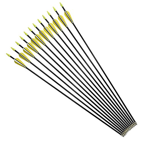 YLS 28 inch Archery Fiberglass Arrows Youth Target Practice Recurve Bow Arrows Sleeve Tips(12pcs)