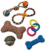 Puppy Toy Club 6 Pack of Dog Toys for Small to Medium Sized Dogs