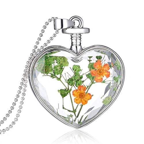 Women Necklace Fashion Dry Flower Love Heart Glass Bottle Pendant Necklace Forget Me Not Valentines Gift for Girlfriends Gift -