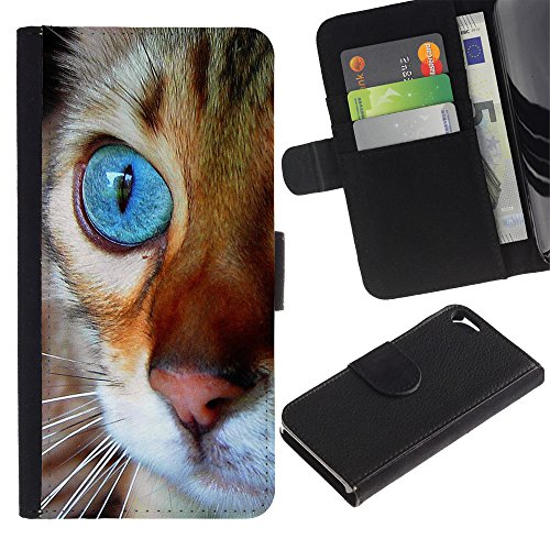 OMEGA Case / Apple Iphone 5 / 5S / Maine coon blue eye orange cat / Cuir PU Portefeuille Coverture Shell Armure Coque Coq Cas Etui Housse Case Cover Wallet Credit Card