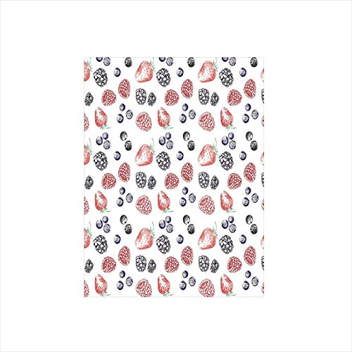 - Decorative Privacy Window Film/Cute Fruit Figures Strawberry Blueberry Raspberry Doodle Style Illustration/No-Glue Self Static Cling for Home Bedroom Bathroom Kitchen Office Decor Red Indigo Black