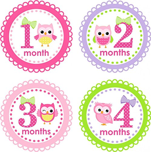 Little LillyBug Designs - Monthly Baby Stickers - Hoot Owls