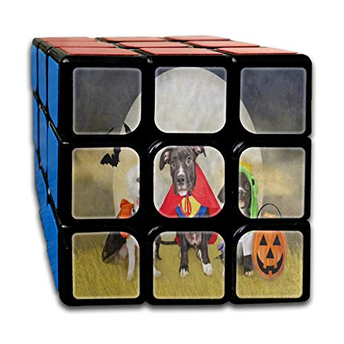 Speed Cube Hipster Puppy Dog Dressed In Halloween Costumes Fantastic 3 x 3 Magic Cube For Adults Intelligence Toy -