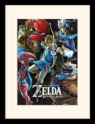 Amazon.com: The Legend of Zelda: Respiración del desierto ...