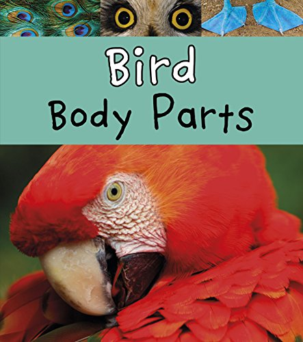 animal body parts book - 3