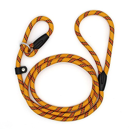Coolrunner Pet Dog Whisperer Cesar Slip Training Leash Lead Collar (Yellow)