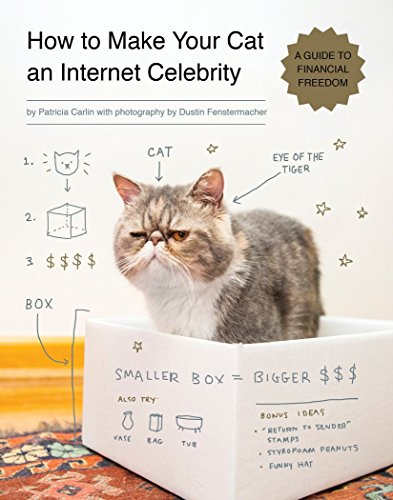 How to Make Your Cat an Internet Celebrity: A Guide to Financial Freedom ()