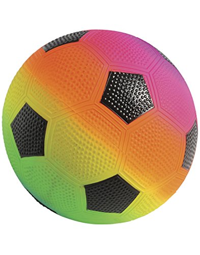 Lot Of 12 Rainbow Theme Soccer Design Playground Kickballs