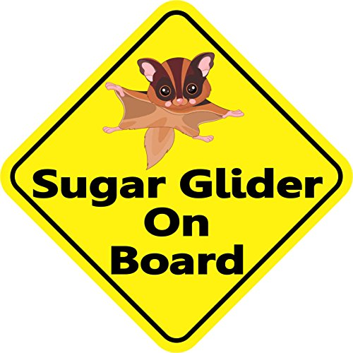 5in x 5in Sugar Glider On Board Sticker Vinyl Animal Window Decal Stickers by StickerTalk