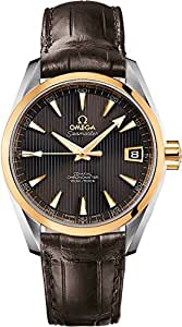 Omega Seamaster Aqua Terra Men's Watch 231.23.39.21.06.002