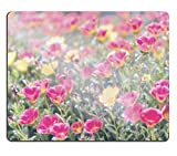Liili Mouse Pad Natural Rubber Mousepad IMAGE ID 32041653 Common Purslane or Verdolaga or Pigweed or Little Hogweed or Pusley flower in the garden