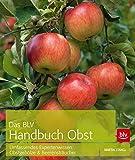 Das BLV Handbuch Obst: Umfassendes Expertenwissen: Obstgehölze & Beerensträucher