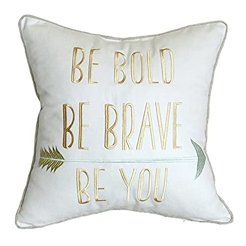 Inspirational pillows with quotes amazon
