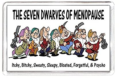 Menopause Period Mood Seven Dwarfs Film Snow White Characters Quotes Saying  Collectors Gift Present Novelty