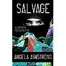 Salvage: A Gen2K Novelette