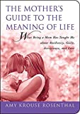 The Mother's Guide to the Meaning of Life: What Being a Mom Has Taught Me About Resiliency, Guilt, Acceptance, and Love (Guides to the Meaning of Life)