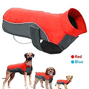 Didog Reflective Dog Winter Coat Sport Vest Jackets Snowsuit Apparel - 8 Sizes Available For Small Medium Large Dogs,Red,5XL Size