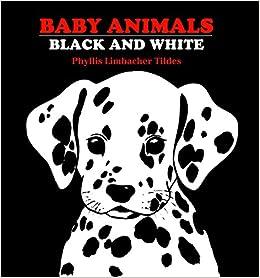 Baby Animals Black & White