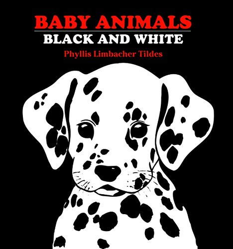 Baby Animals Black and White
