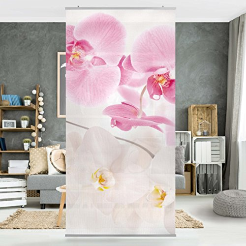 Halterung Apalis Raumteiler Wellness Orchidee Blumenbild 250x120cm mit transp