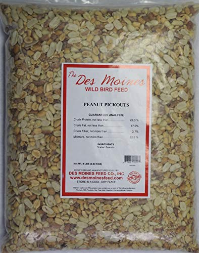 Peanut Pickouts All Natural Wild Bird Food Birds Love 8 lbs