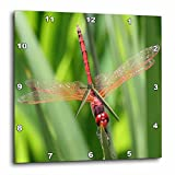 3dRose dpp_21748_2 Insects Dragonfly-Wall Clock, 13 by 13-Inch For Sale