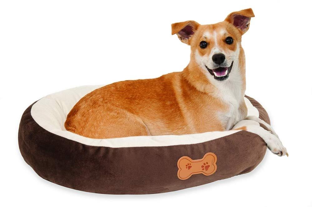 Aspen Pet Oval Dog Bed Black Friday Deal 2021