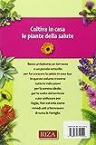 Coltiva in casa le piante dalla salute. Come seminarle, farle crescere e usarle per preparare rimedi, infusi e tisane