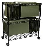 Apollo Hardware 2-Tier File Cart / Mobile File Cart (Black) (2-TIER)