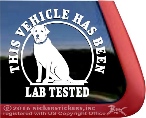 window decal lab - 4