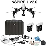 DJI Inspire 1 V2.0 Bundle with TB47 & TB48 Intelligent Flight Batteries, Remote Harness, 16GB MicroSD Card and more...