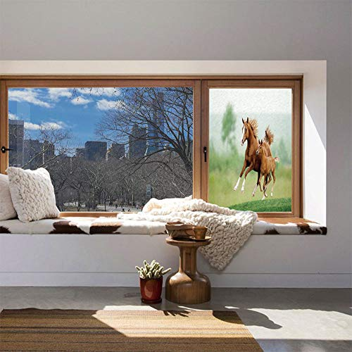 YOLIYANA Vinyl Non Adhesive Privacy Film,Horse Decor,for Any Places: Kitchen, Bedroom,Running Chestnut Horses Mare and Foal Meadow - Foal Chestnut