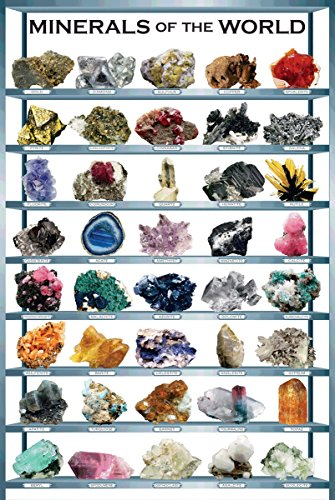 Minerals of the World 24 x 36 Inch Full Color Geology Inform