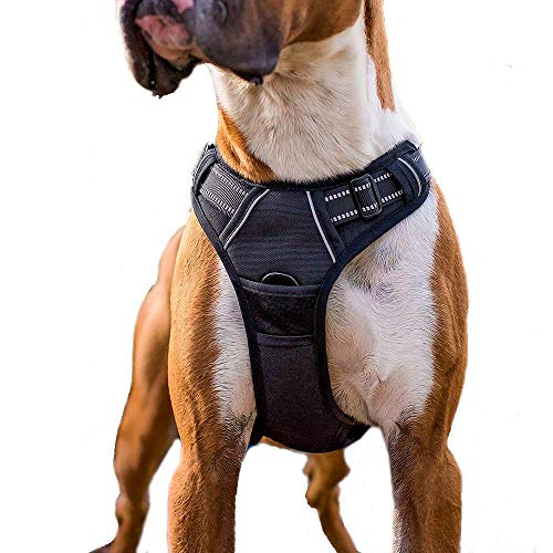 (Rabbitgoo Adjustable Dog Harness No Pull Reflective Vest with Handle High Visibility Reinforced Straps Easy Control Harness (Large, Black))
