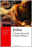 Joshua (Two Horizons Old Testament Commentary)