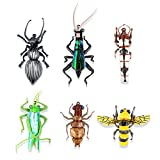 Flyafish Dung Beetle Cricket Dung Bettle Larva Locust Dragonfly Larva Bumble Bee Dry and Wet Flies Fishing Lure