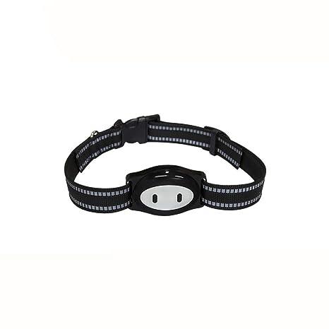 Rastreador GPS para mascotas, localizador de mascotas con ...