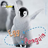 Egg to Penguin, Camilla De la Bédoyère, 1609920481