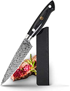 Utility Knife 5 inch, Kitchen Serrated Utility Knife for Meat, Steak, Fruit, Vegetable Knife German HC Stainless Steel, Ergonomic Handle with Gift Box