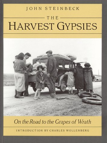an analysis of the themes in the grapes of wrath by john steinbeck They provide chapter-by-chapter analysis explanations of key themes, motifs  i thought the grapes of wrath by john steinbeck was quite possibly the best book i.