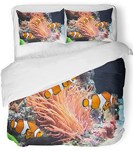 Emvency 3 Piece Duvet Cover Set Breathable Brushed Microfiber Fabric Orange Coral Sea Anemone and Clown Fish Red Reef Aquarium Anemonefish Animal Bedding Set with 2 Pillow Covers King Size