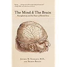 Livros na amazon cincias comportamentais psicologia the mind and the brain neuroplasticity and the power of mental force fandeluxe Gallery