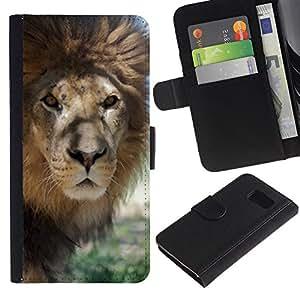 iKiki Tech / Cartera Funda Carcasa - Lion Beige Nature Savannah Animal King - Samsung Galaxy S6 SM-G920
