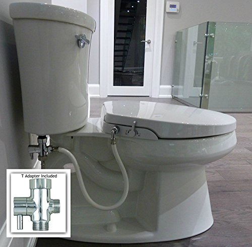 Great Best Toilet Guide Awesome Ideas