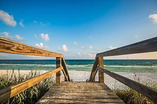 Coastal Photography Wall Art Print - Picture of Sandy Boardwalk Leading to Beach Along Gulf Coast Near Destin Florida Beach House Decor 5x7 to 40x60