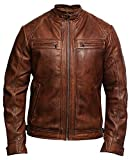 BRANDSLOCK Mens Genuine Leather Biker Jacket Waxed Brando (X-Large / (Fits Chest: 40-42 inches), Brown)