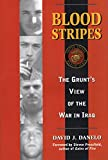 Book cover for Blood Stripes: The Grunt's View of the War in Iraq