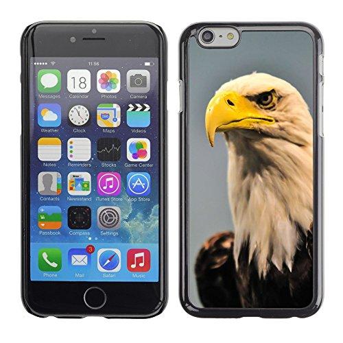 "Bild Hart Handy Schwarz Schutz Case Cover Schale Etui // M00133305 Amerika amerikanisch Bald Schnabel // Apple iPhone 6 PLUS 5.5"""